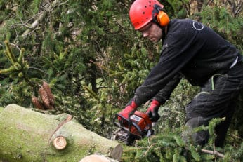 Woodcutter with safety gear