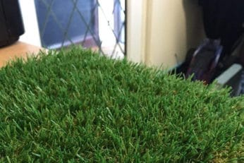 sample of luxury turf
