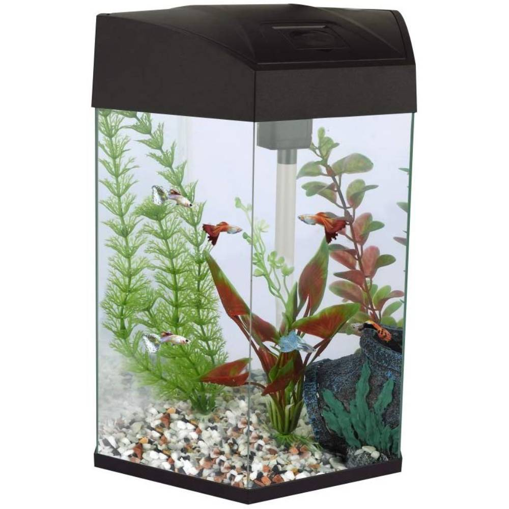 Fish R Fun Hexagonal Aquarium