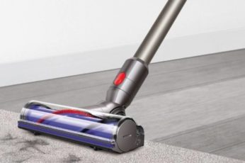 using v8 animal in vacuuming hairs on a carpet