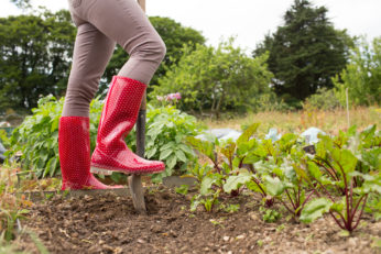 gardening with red wellies